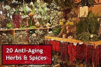20 Anti Aging Herbs and Spices To Add To Your Diet   Aromatherapy   Scoop.it