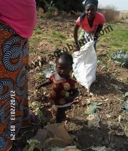 L'exode rural et l'agriculture | Questions de développement ... | Scoop.it