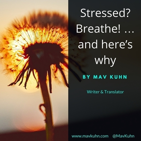 Stressed? Breathe! … and here's why | mindfulnes | Scoop.it