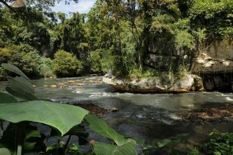 """Indonésie: sur les berges du Citarum, le """"fleuve le plus pollué au monde""""   Toxique, soyons vigilant !   Scoop.it"""
