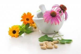 Natural Healing Powers of Echinacea | eCellulitis | Healthy Food Tips & Tricks | Scoop.it