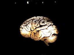 Wissenschaftskolumne: Der Wille kann nur wollen, was das Hirn entscheidet - Tagesspiegel | Persoenlichkeit & Kompetenz | Scoop.it