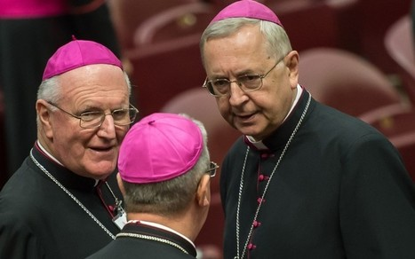 CatholicHerald.co.uk » Polish bishops vow to resist change at synod on the family | Marriage and Family (Catholic & Christian) | Scoop.it
