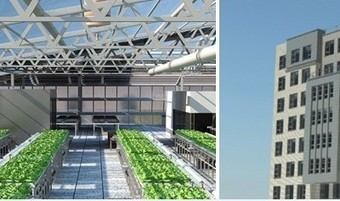 First Ever Rooftop Farm on Affordable Housing Project | Living Green - Integrated Architecture & Practices | Scoop.it