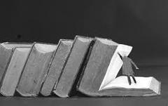 Quelles sont les caractéristiques des savants qui sont un exemple à suivre ? | Le Coran | Scoop.it