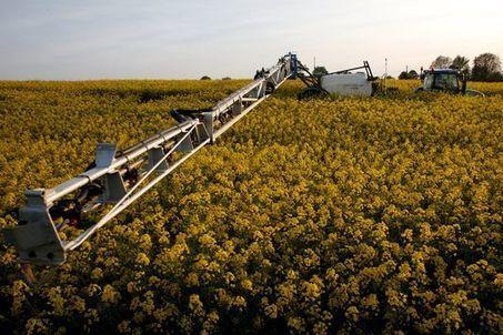 Sylvie Brunel ignore la réalité de l'agriculture biologique - Le Monde | Questions de développement ... | Scoop.it