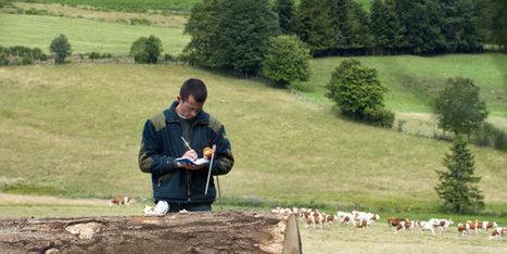 Les métiers de la biodiversité sont un potentiel sous-estimé | Les colocs du jardin | Scoop.it