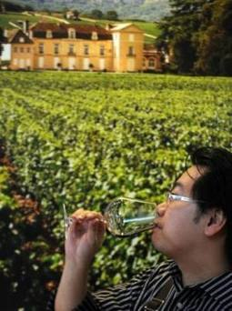 Food -  Wine tourism a growing attraction for China's travellers   Tecnologie: Soluzioni ICT per il Turismo   Scoop.it