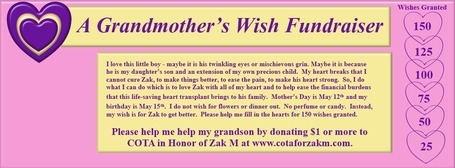 """A Grandmother's Wish"" Fundraiser 