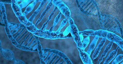 Google will power Stanford's genomics service   Cool New Tech   Scoop.it