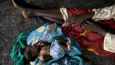 África crece y muere de hambre | Pensar | Scoop.it