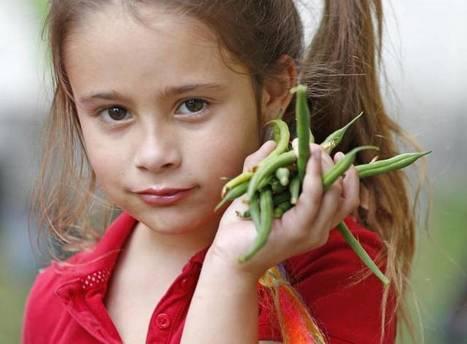 Kids cultivate a healing garden at Seminole Elementary in Florida | School Gardening Resources | Scoop.it