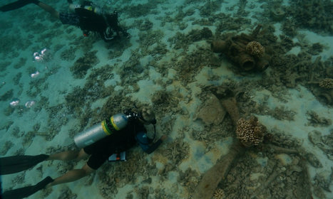 10 Feet Below Waters Off Midway Atoll, a Famous Flying Dud | HeritageDaily Archaeology News | Scoop.it