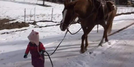 A Sweet Little Girl Takes A Gentle Horse For A Walk In The Snow And It's Absolutely Precious | Target EN Feed (Int'l) | Scoop.it