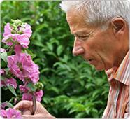 Maladie de Parkinson : Qu'est ce que c'est ?   Psychomotricité et Vieillissement   Scoop.it