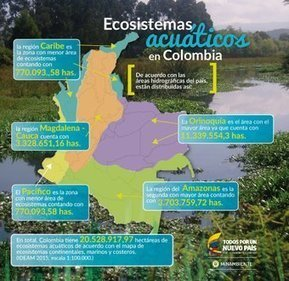 Ecosistemas acuáticos de Colombia | @ProAvesColombia | Agua | Scoop.it