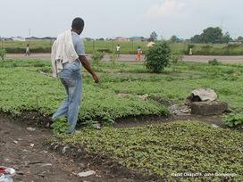 Kasaï-Oriental: la Belgique affecte 30 millions USD aux projets agricole et routier - CTB | International aid trends from a Belgian perspective | Scoop.it