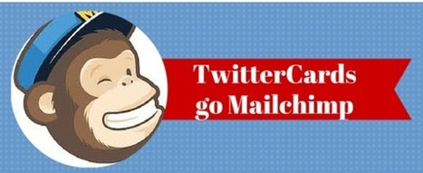 Comment développer une liste d'abonnés mailchimp ? | Time to Learn | Scoop.it