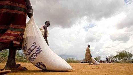 La faim | WFP | Programme Alimentaire Mondial - Lutter contre la faim dans le monde | comment lutter contre la faim dans le monde | Scoop.it