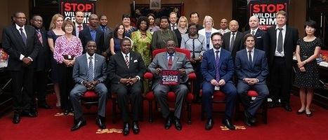 "Malawi President Peter Mutharika launches ""Stop wildlife crime films"" 