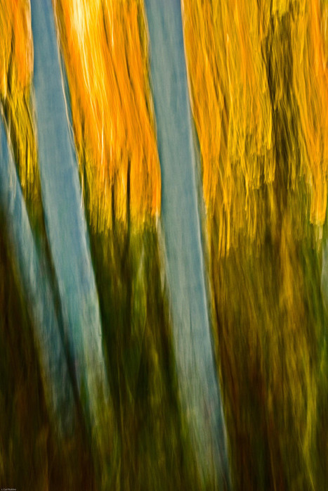 Impressionistic Photographs That Look Like Paintings - 5 Tips for Using Camera Panning to Create Painterly Photographs | Impressionist camera | Scoop.it