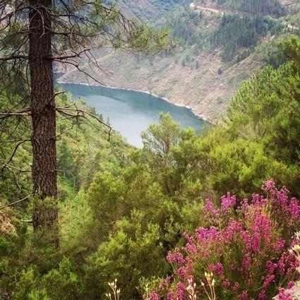 Blog de viajes El Fotógrafo Viajero © Rafa Pérez | Fotografía-Argazkilaritza | Scoop.it