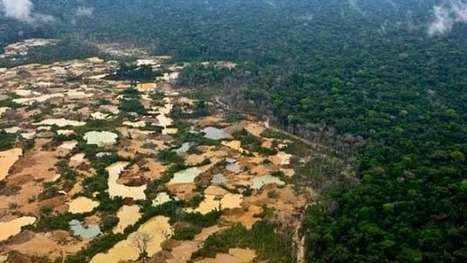 The World Bank's inability to see deforestation in Peru | Peruvian Amazon | Scoop.it