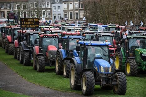 Les politiques entrent sur le terrain de la crise agricole - LCP Assemblée nationale   Le Fil @gricole   Scoop.it