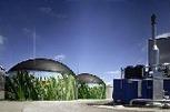 Agroenergy.gr | Biomass 2014 | Scoop.it