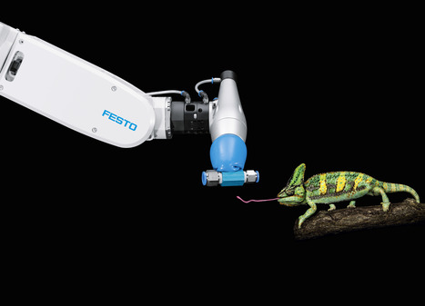 Festo: BionicAnts and eMotionButterflies forming... - FUTURESCOPE   Tech Savvy   Scoop.it