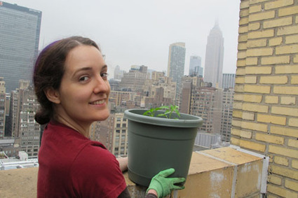 Rooftop Gardening Part 1: So You Wanna' Be an Urban Gardener? | Cool Green Science: The Conservation Blog of The Nature Conservancy | Sustainable Futures | Scoop.it
