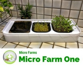 Micro Farm ONE ... Here We Go | Vertical Farm - Food Factory | Scoop.it