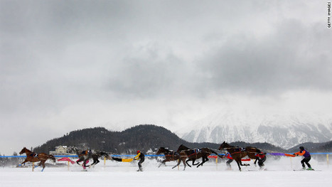 Cool racing: Horses battle on snow | And the Whippoorqwill Sang | Scoop.it