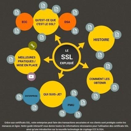 Sécurité : Certificats SSL, une explication simple et explicite by ... - Le Journal de la Next-Gen | TOIP & Security Survey By TelNowEdge | Scoop.it