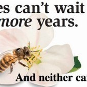 Coalition Builds Buzz on Pollinator Decline With National Ad Campaign | EcoWatch | Scoop.it