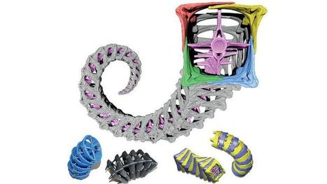 Seahorse tail may be the key to future of robotics   Seahorse Project   Scoop.it