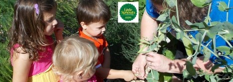 What Plants are Positively Preschool Approved in the Garden? - Little Sprouts Learning | Learning and Teaching Literacy | Scoop.it