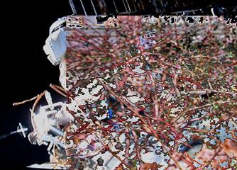 Digital Art Gallery - Computerpaintings and Artprints | Digital Abstracts | Scoop.it