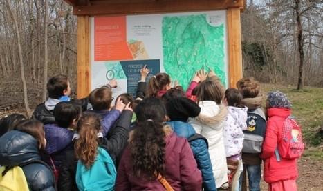 La valorizzazione del Bosco della città della Quercia - ladigetto.it | scatol8® | Scoop.it