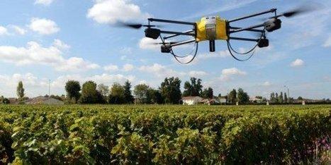 Des drones qui lâchent des insectes dans les champs | Think outside the Box | Scoop.it