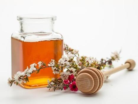 Manuka honey could stave off catheter-associated UTIs | Preventive Medicine | Scoop.it