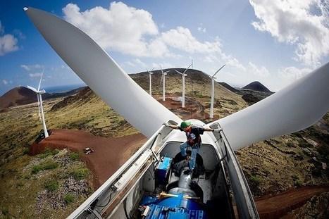 Wind Energy Now Cheaper than Coal | GarryRogers NatCon News | Scoop.it