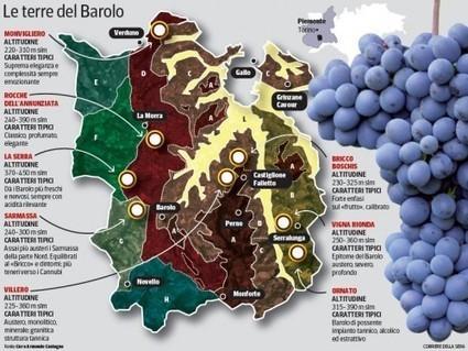 Barolo, otto magnifici (classici) | Grande Passione | Scoop.it