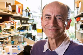 Thomas Südhof wins Nobel Prize in Physiology or Medicine   Medicine   Scoop.it