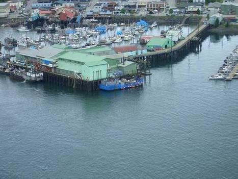Seafood Processors   Aquaculture (Global Aqua Link)   Scoop.it