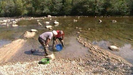 Des chercheurs d'or dans les Alpes - France 3 Alpes | Or infos | Scoop.it