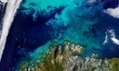 Climate change pushing marine life towards the poles, says study | Global Warming | Scoop.it