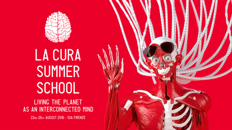 Augmented Sensibility: a Summer School with La Cura and the interconnected life on the planet | metrobodilypassages | Scoop.it