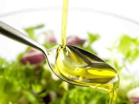 Violin, progetto di ricerca che valorizza l'olio di oliva | Fondazione Mach | Scoop.it