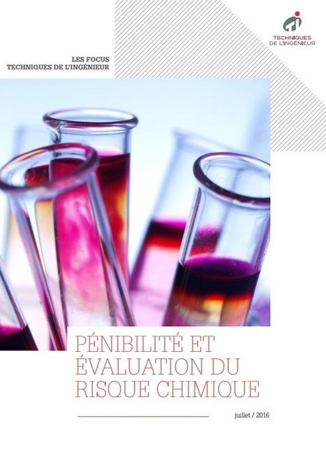 Pénibilité et évaluation du risque chimique - Livre blanc | Techniques de l'ingénieur | Alimentation Santé Environnement | Scoop.it